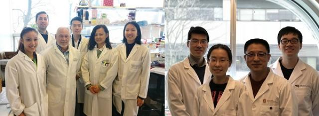 Buttyan and Wang lab groups
